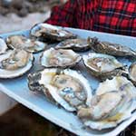 OysterFest is held annually on the last Saturday in October in the Chesapeake Bay Maritime Museum in St. Michaels, Maryland.