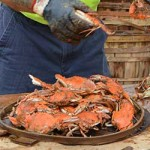 Waterman's Appreciation Day and Crab Feast at the Chesapeake Bay Maritime Museum in St. Michaels, Maryland.