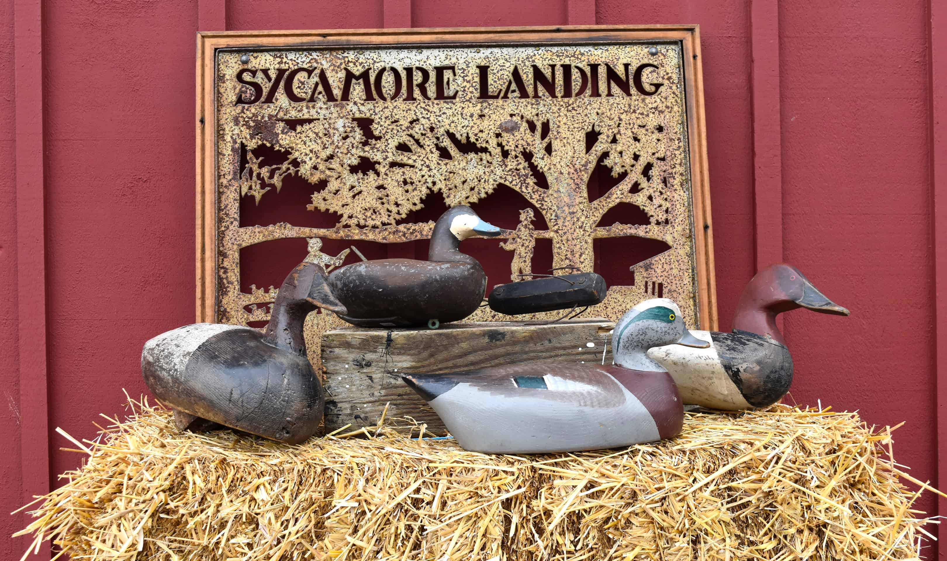 Exhibition: Potomac River Waterfowling