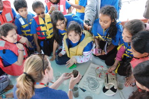 Experiences on the Bay such as our Ecology Cruise are made possible by donations to the Annual Fund.